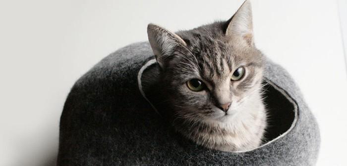 Cama para gatos Cocoon