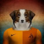 Holanda: Kooikerhondje