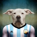 Argentina: Dogo argentino