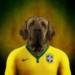 Brasil: Mastín brasileño