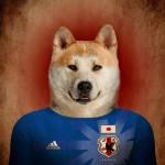 Japón: Akita
