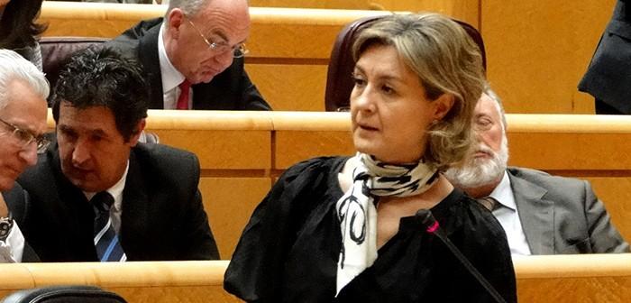 García-Tejerina en el Senado