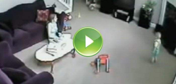 Vídeo de gato defendiendo a bebé