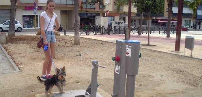 WC canino en El Vendrell (Tarragona)