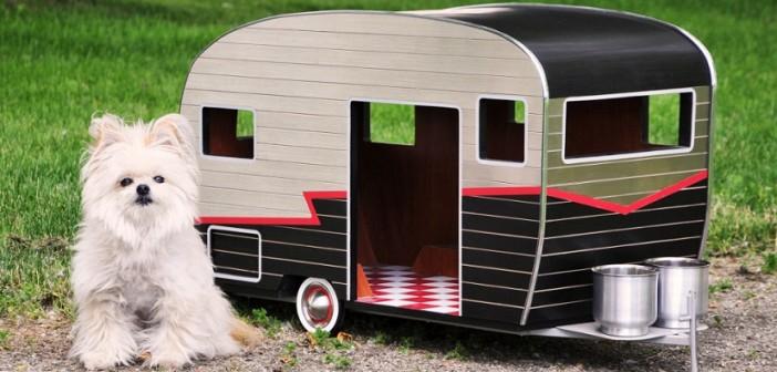 Caravana para perros