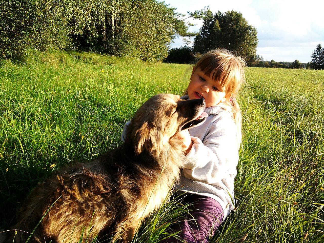 Una niña acariciando a un perro