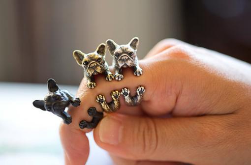 Anillos bulldog francés